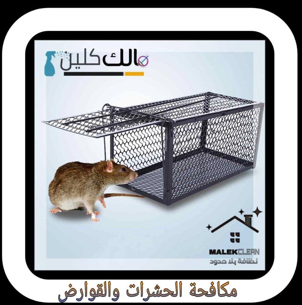 فأر ومصيدة وشعار مالك كلين