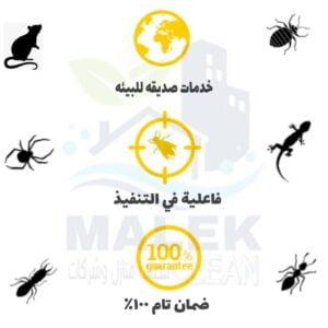 أفضل شركة مكافحة حشرات بالقصيم